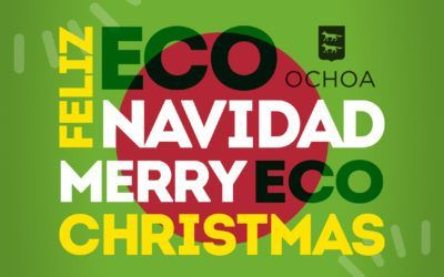 ECO MERRY CHRISTMAS!!!