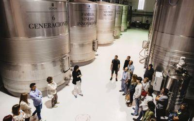 ¿Sabías qué es la maceración del vino?